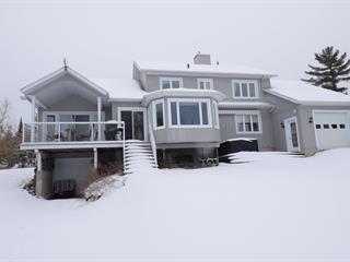 Maison à vendre à Sainte-Praxède, Chaudière-Appalaches, 510, Chemin du Hameau, 12585597 - Centris.ca