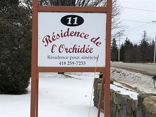 Commerce à vendre à Berthier-sur-Mer, Chaudière-Appalaches, 11, Route de Saint-François, 10796290 - Centris.ca