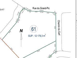 Terrain à vendre à Saint-Hippolyte, Laurentides, Rue du Grand-Pic, 18121454 - Centris.ca