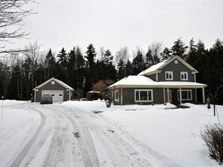 Maison à vendre à Saint-Denis-de-Brompton, Estrie, 735, Rue des Cantons Sud, 22279925 - Centris.ca