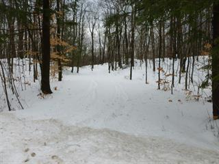 Lot for sale in Cantley, Outaouais, Chemin  Lamoureux, 14832708 - Centris.ca