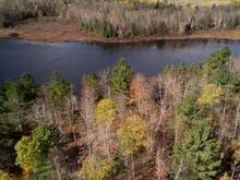 Terrain à vendre à Litchfield, Outaouais, 197, Chemin  Burke, 26658011 - Centris.ca