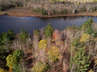 Lot for sale in Litchfield, Outaouais, 197, Chemin  Burke, 26658011 - Centris.ca