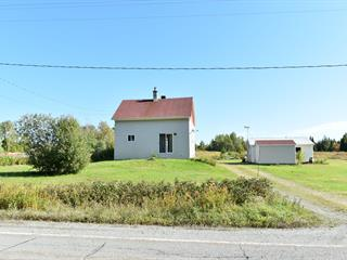 Maison à vendre à Saint-Fabien-de-Panet, Chaudière-Appalaches, 366, Rue  Principale Est, 14814062 - Centris.ca