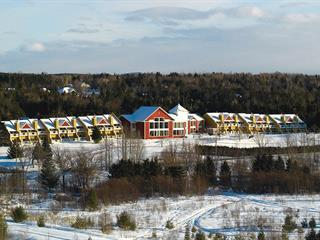Loft / Studio for sale in Orford, Estrie, 44, Avenue de l'Auberge, apt. 2240, 15885613 - Centris.ca