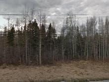 Terrain à vendre à Rivière-Héva, Abitibi-Témiscamingue, 1467, Route  Saint-Paul Sud, 20455378 - Centris.ca