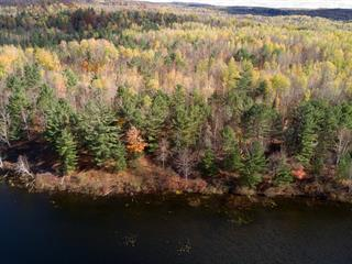 Lot for sale in Litchfield, Outaouais, 195, Chemin  Burke, 14379931 - Centris.ca