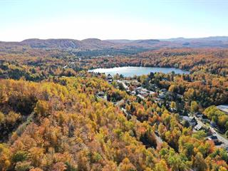 Lot for sale in Saint-Faustin/Lac-Carré, Laurentides, Rue du Plateau, 25493369 - Centris.ca