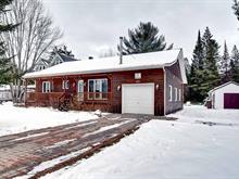 Maison à vendre à Amherst, Laurentides, 177, Chemin  Bisson Sud, 13497451 - Centris.ca