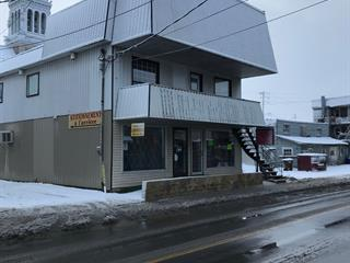 Commercial building for sale in Saint-Lin/Laurentides, Lanaudière, 733 - 737, Rue  Saint-Isidore, 9568586 - Centris.ca