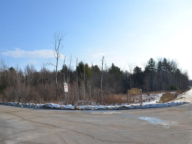 Lot for sale in Stanbridge East, Montérégie, Chemin  Ross, 17416358 - Centris.ca