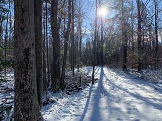 Land for sale in Calixa-Lavallée, Montérégie, Rang  Lamontagne, 13550495 - Centris.ca