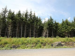 Lot for sale in Saint-Denis-de-Brompton, Estrie, 240, Rue du Patrimoine, 11338168 - Centris.ca