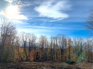 Terrain à vendre à Shefford, Montérégie, Impasse du Coteau, 9743866 - Centris.ca