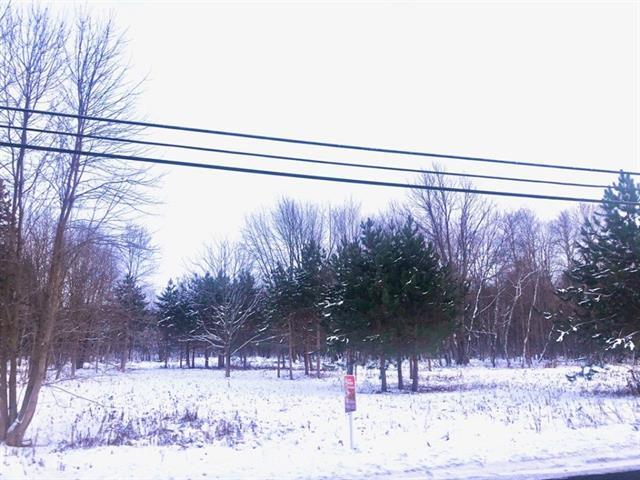 Terrain à vendre à Contrecoeur, Montérégie, Route  Marie-Victorin, 14076556 - Centris.ca