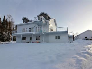 House for sale in Preissac, Abitibi-Témiscamingue, 67, Chemin  Doré, 16215804 - Centris.ca