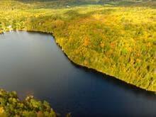 Terre à vendre à Labelle, Laurentides, Chemin du Lac-Labelle, 11885568 - Centris.ca