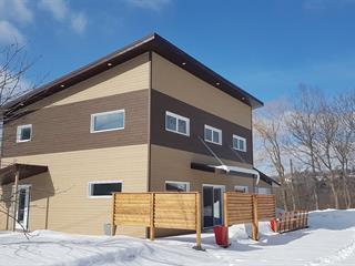 Maison à louer à Sutton, Montérégie, 24, Rue  Academy, 20137740 - Centris.ca