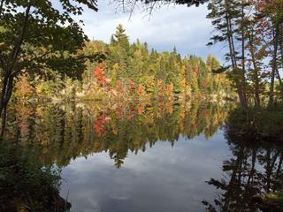 Terrain à vendre à Saint-Bruno, Saguenay/Lac-Saint-Jean, 9, Chemin du Lac Marco, 18032750 - Centris.ca