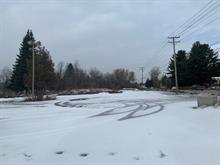 Terrain à vendre à Sainte-Julienne, Lanaudière, 2128, Route  125, 26732447 - Centris.ca