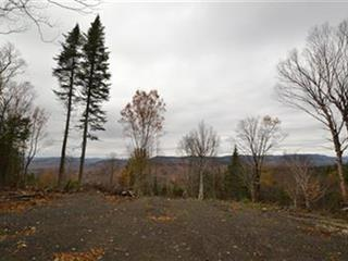 Lot for sale in Lac-Beauport, Capitale-Nationale, Chemin du Moulin, 26265839 - Centris.ca