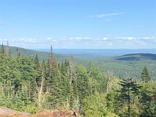 Lot for sale in Lac-Beauport, Capitale-Nationale, Chemin du Moulin, 12112261 - Centris.ca
