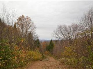 Terrain à vendre à Lac-Beauport, Capitale-Nationale, Chemin du Moulin, 12112261 - Centris.ca