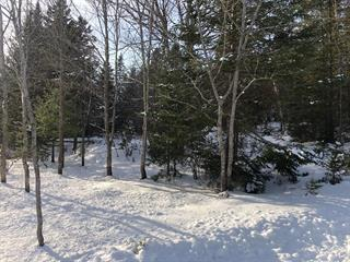 Lot for sale in Sainte-Christine-d'Auvergne, Capitale-Nationale, 7, 1re av. du Domaine-Alouette, 10843096 - Centris.ca
