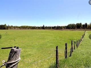 Land for sale in Saint-Raymond, Capitale-Nationale, A, Route de Chute-Panet, 25878469 - Centris.ca