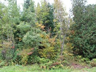 Lot for sale in Déléage, Outaouais, Rue  Patsy, 27687265 - Centris.ca