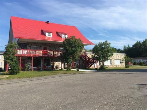 Bâtisse commerciale à vendre à Trois-Pistoles, Bas-Saint-Laurent, 35, Rue  Saint-Jean-Baptiste, 25787112 - Centris.ca
