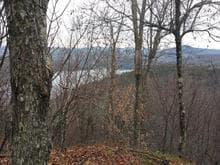 Terre à vendre à Montcalm, Laurentides, Chemin  Morgan, 28383108 - Centris.ca