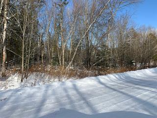 Lot for sale in Magog, Estrie, 2, Chemin  Montpetit, 13876063 - Centris.ca