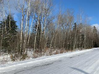 Lot for sale in Magog, Estrie, 1, Chemin  Montpetit, 10491764 - Centris.ca