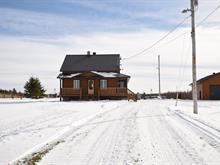 Maison à vendre à Lyster, Centre-du-Québec, 380, 1er Rang Est, 23559703 - Centris.ca