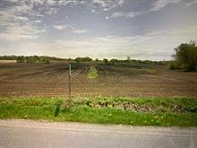 Terre à vendre à Saint-Eugène, Centre-du-Québec, 761Z, Chemin de Saint-Hyacinthe, 10081400 - Centris.ca
