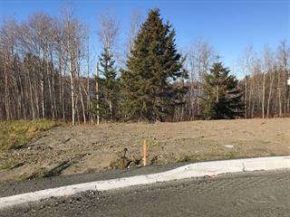 Terrain à vendre à Rouyn-Noranda, Abitibi-Témiscamingue, 1027, Rue  Lavallée, 20693483 - Centris.ca