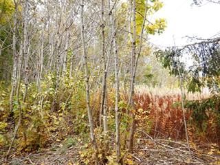 Lot for sale in Notre-Dame-des-Neiges, Bas-Saint-Laurent, Rue des Érables, 16524473 - Centris.ca