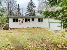 Maison à vendre à Notre-Dame-de-la-Salette, Outaouais, 300, Chemin du Domaine, 18317921 - Centris.ca