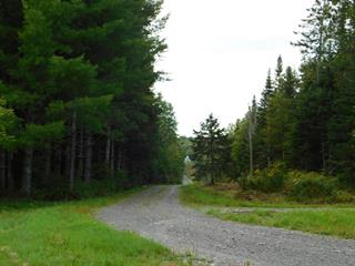 Land for sale in Saint-Camille-de-Lellis, Chaudière-Appalaches, 135, Route  204 Ouest, 25003761 - Centris.ca