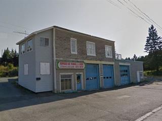 Bâtisse commerciale à vendre à Thetford Mines, Chaudière-Appalaches, 3800 - 3802, Rue du Lac-Noir, 19097492 - Centris.ca