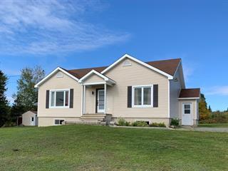 House for sale in Sainte-Apolline-de-Patton, Chaudière-Appalaches, 147, Rang du Nord, 18290905 - Centris.ca