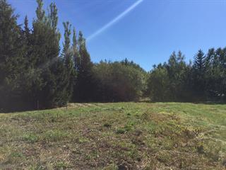 Terrain à vendre à Saint-Roch-des-Aulnaies, Chaudière-Appalaches, Route de la Seigneurie, 12753565 - Centris.ca