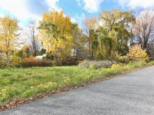 Terrain à vendre à Venise-en-Québec, Montérégie, 25e Rue Est, 24005643 - Centris.ca