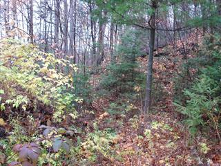 Lot for sale in Sainte-Adèle, Laurentides, Rue des Arlequins, 10572189 - Centris.ca