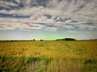 Farm for sale in Saint-Théodore-d'Acton, Montérégie, 2254, 8e Rang, 21108461 - Centris.ca