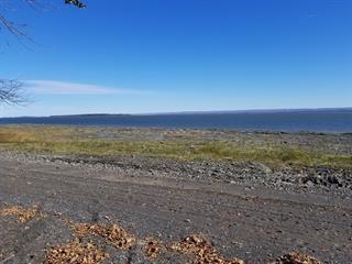 Terre à vendre à Saint-Jean-de-l'Île-d'Orléans, Capitale-Nationale, Chemin des Mauries, 18017585 - Centris.ca