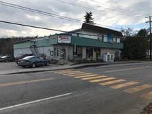 Commerce à vendre à Brébeuf, Laurentides, 225, Route  323, 20213835 - Centris.ca