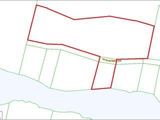 Terrain à vendre à Saint-Faustin/Lac-Carré, Laurentides, Chemin des Lupins, 24661743 - Centris.ca
