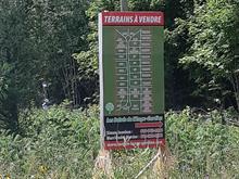 Terrain à vendre à L'Ange-Gardien (Outaouais), Outaouais, Chemin  Pierre-Joanisse, 20303010 - Centris.ca